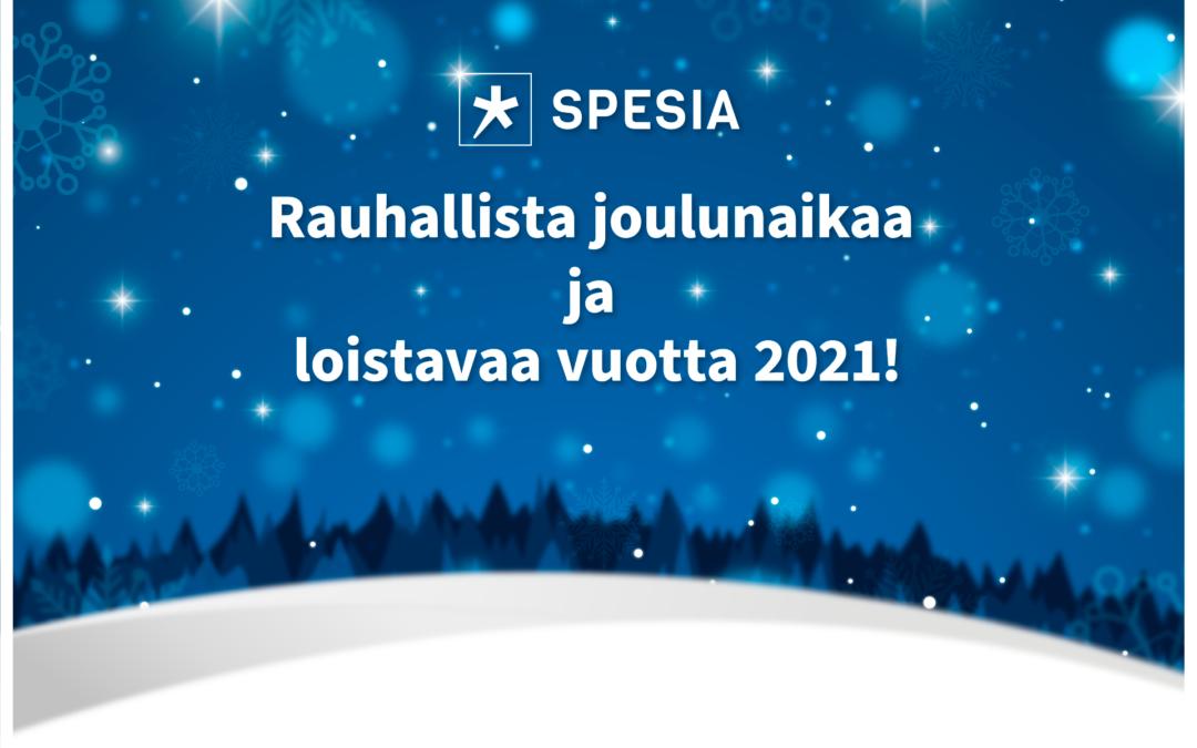 Rauhallista joulunaikaa ja loistavaa vuotta 2021