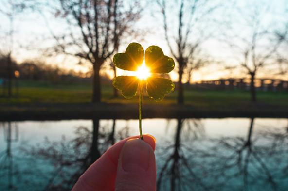 Käsi pitelee neliapilaa, jonka läpi aurinko siivilöityy