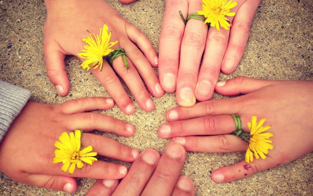 Viisi kämmenselkää, joissa kaikissa on voikukka sormen ympärillä.